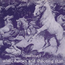 White Horses And Shooting Stars - Pullover